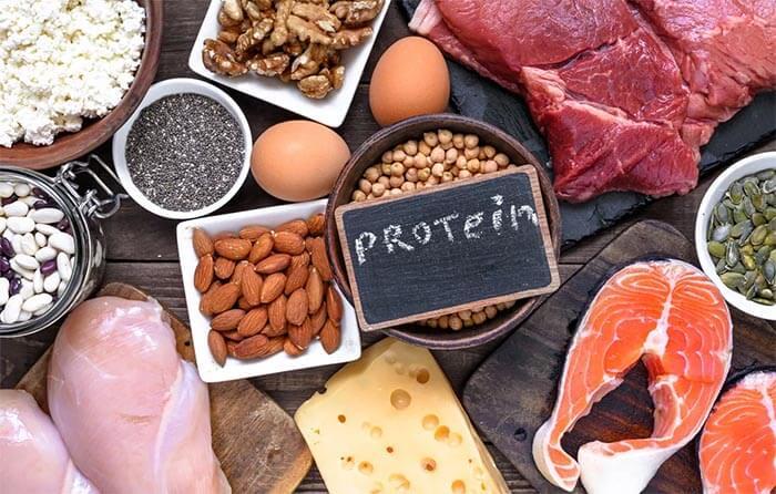 białko