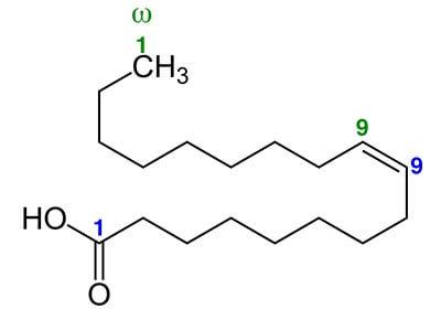 kwas oleinowy