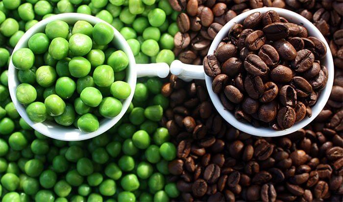 kawa palona vs zielona kawa