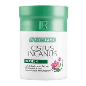 Cistus Incanus