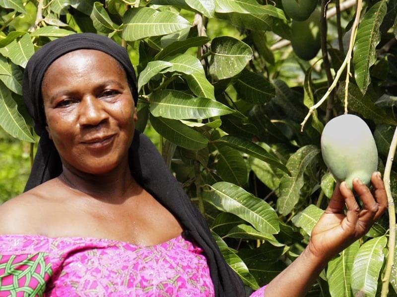 Mango afrykańskie - rewolucja w dziedzinie odchudzania?