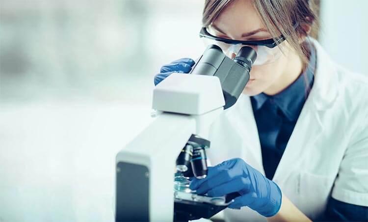 kapsaicyna badania